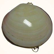 Vintage Hinged Shell Trinket Box