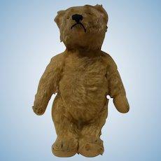 Old Vintage German Teddy Bear no ID