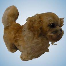 Vintage German Steiff Peky Pekingese Dog with Button