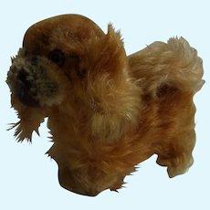 Vintage German Steiff Peky Pekingese Dog no ID