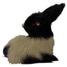 German For Bunny Rabbit Black White