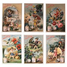 Liebig Meat Extract Trading Cards Set dated 1885