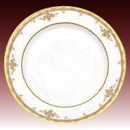 """Fine Vintage Haviland Limoges Marked 5pc  9 3/4"""" Plate Set"""