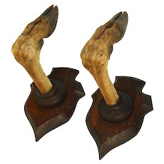 Antique Victorian Era Black Forest Style Trophy Mount Pair, Gun Rack, Roe Deer Hooves