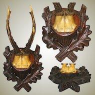 Antique Black Forest Carved Trophy Mount, European Roe Deer Horns or Antlers, Oak Leaf Accented Plaque