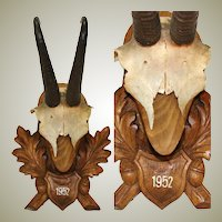 Vintage Black Forest Carved Trophy Mount, Oak Leaves with Genuine Chamois or Mountain Goat Horns
