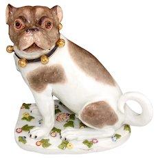 "RARE Antique Dresden Porcelain PUG Male, 8"" Dog, Hand Painted with Unique Floral Base"