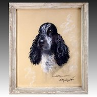 "Original Antique Pastel Portrait of a Dog, Spaniel, ""Skylight"" in Frame, Signed by Artist"