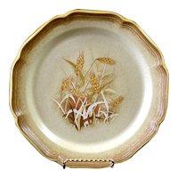 2 Mikasa Whole Wheat Granola Dinner Plates