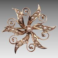 12kt Yellow Gold, Cultured Seed Pearl Victorian Brooch