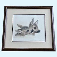 Kurt Meyer-Eberhardt (1895-1977) Fawn Deer Etching Faithful