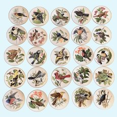 Songbirds of the World Miniature Plates 25 Pieces Franklin Mint Signed Edition Colin Newman