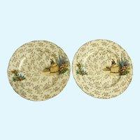 Crinoline Lady Dishes J. Fryer & Son 1945-1954 Dinner Plates