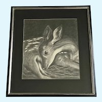 Koch, Baby Fawn Deer Resting 1954 Graphite Sketch Drawing Signed by Artist