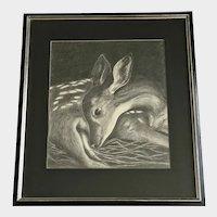 Koch, Baby Fawn Deer Resting 1954 Graphite Sketch Drawing