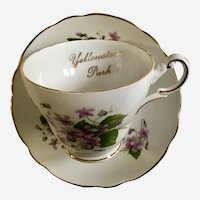 Souvenir Yellowstone Park Violets RE5 By Regency Cup & Saucer Set