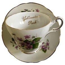 Souvenir Yellowstone Park Violets RE5 By Regency Cup & Saucer Set