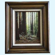 Hillis, Redwood Tree Forest Landscape Oil Painting