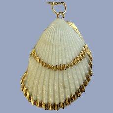 Scallop Pectinidae Shell Pendant Necklace