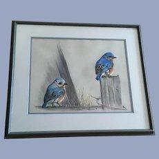M Honsaker, Baby Bluebirds Pastel Painting