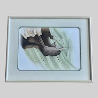 Cynthia Fernell Parsons, Mourning Dove Nesting In Cactus Watercolor Painting