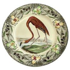 Birds of America (Floral Border) American Flamingo By Adams China Discontinued