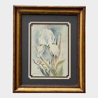 Sue Alston, Iris Flower Watercolor Painting