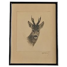 Kurt Meyer Eberhardt, young Buck Deer Etching Listed Artist