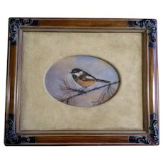 Nancy Hawkins, Oil Painting, Chickadee Bird on Pine Branch, painted on panel, Signed by Well Known Artist