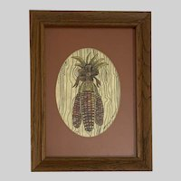 Gretchen Pierson, Dried Indian Corn Pen and Ink Watercolor Painting