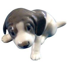 Royal Copenhagen Pointer Puppy Dog Porcelain Figurine #1311 Denmark