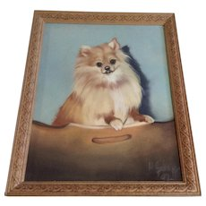 Pomeranian Puppy Dog Portrait Pastel Drawing Realism Signed by Artist