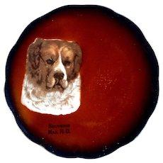 Antique Taylor Smith Taylor Mark 1908-1915 Dog Saint Bernard China Collectible Souvenir Plate Max, North Dakota