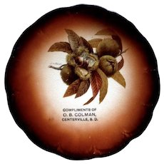 Antique Taylor Smith Taylor Mark 1908-1915 Seed Pod By R.K. Beck China Collectible Souvenir Plate Centerville, South Dakota