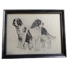 Vintage St. Bernard  Dogs Pencil Sketch Works on Paper
