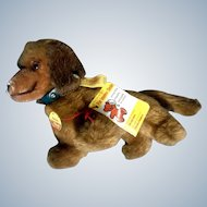 Steiff Hexie Dackel Dachshund Dog 1979 - 1986 4142/12 Button Tag Stuffed Plush Animal