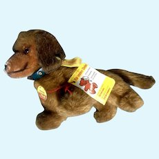 Steiff Hexie Dackel Dachshund Dog 1979 - 1986 4142/12 Button Tag Stuffed Plush Animal