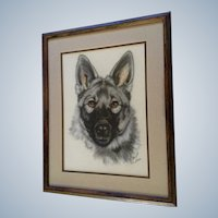C Holly Merrifield, German Shepherd Portrait Pastel Drawing Signed by Colorado Wildlife Artist