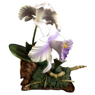 Rare Vintage Andrea by Sadek Purple Cattleya Orchid Flowers 9735 Porcelain Figurine Discontinued