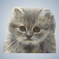 Fritzi W. Klopfenstein (1915-2013), Fluffy Kitten Blue Cream Persian Cat Pastel Drawing Signed by Artist