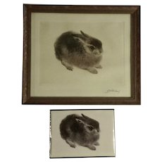 Kurt Meyer Eberhardt (1898 - 1977) Original Etching Junghase Titled, Young Hare Signed by Listed Artist with Card Adorable Baby Bunny Rabbit Looks Like Gumgum