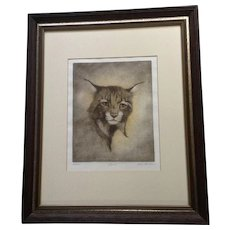 Lois Carson, Lynx Watercolor Drypoint Etching Limited Edition Print Signed by Texas Artist