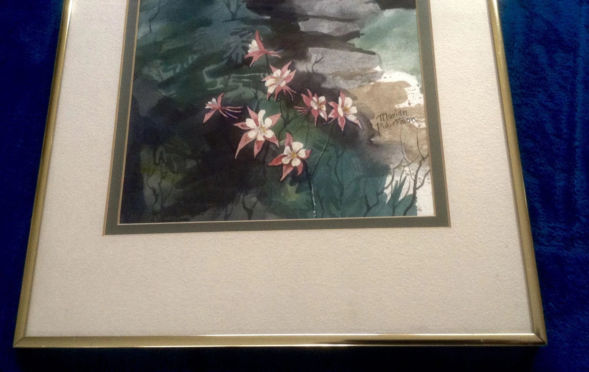 Mariah Robertson Watercolor Painting Aquilegia Columbine