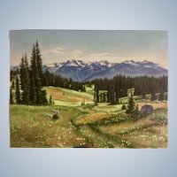 Mt. Revelstoke B. C. Landscape Oil Painting on Canvas of Wildflower Meadow Signed by Artist