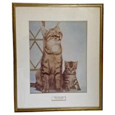 1960's Walter Chandoha That's My Baby Cat Poster Framed Kitty and Kitten