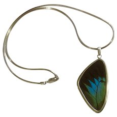 Sterling Silver Necklace with Real Butterfly Wing Pendant 925 Italy AGI