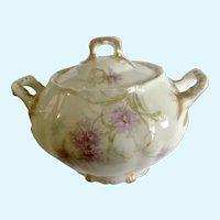Saint Cloud Theodore Sugar Bowl Haviland Limoges France