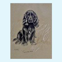 1930's-1940's Lucy Dawson, Spaniel Named Susan Framed Print