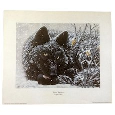 Shane Dimmick Winter Wanderer Black Wolf Limited Edition Print 1334/1500 Wildlife Artist 1996 Signed By Artist