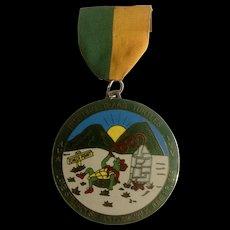 Trotting Texas Turtles 1985 Lake Stillhouse Hollow Walk Award Medallion